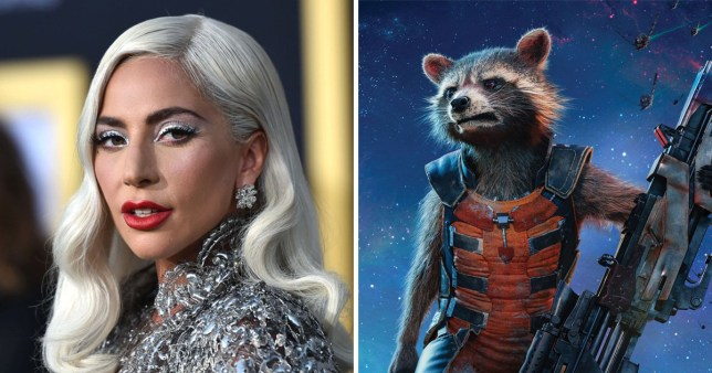 Lady Gaga May Play Rocket's Love Interest In Guardians of the Galaxy 3