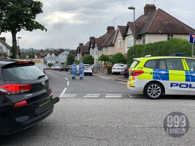 A man has died following a triple stabbing in north London, the fifth killing in the capital in six days, triggering a murder investigation. Officers were called to Welbeck Road, Barnet, at 10.50pm on Tuesday following reports of a fight.