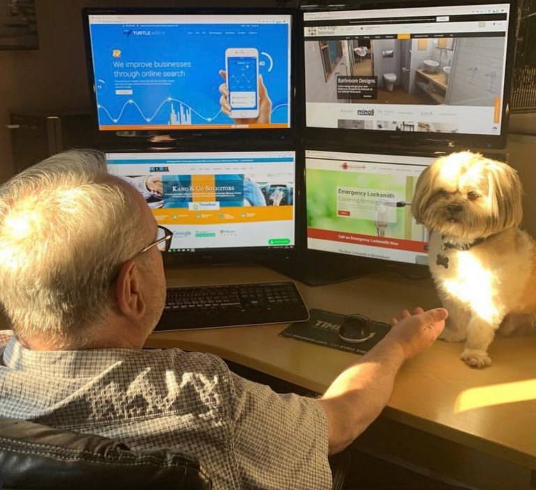 Bring your dog to work day https://twitter.com/YourTurtleMedia/status/1141992821425131520 Picture: YourTurtleMedia