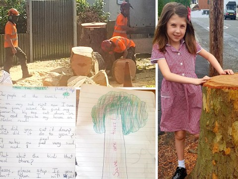 Girl's blistering letter to the council after her favourite tree was chopped down