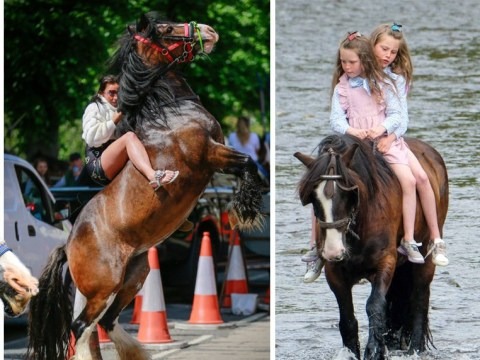 Thousands of travellers glam up for Appleby Horse Fair