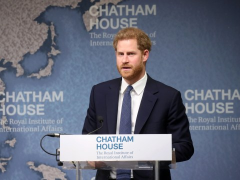 Prince Harry continues Diana's landmine cause saying it is a 'humanitarian issue'