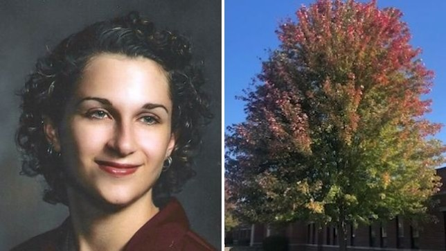 West Chicago High School chopped down this autumn blaze maple planted to commemorate former top student Amanda Meiborg, who died a year after she graduated in 2002. They didn't tell her mom Lee Ann, then brushed-off the stricken mother's complaints