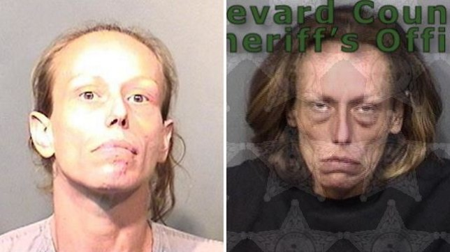 Shocking mugshots show toll of drug abuse on prostitute, 37 | Metro News