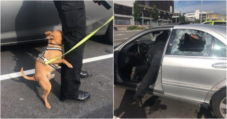 Dog freed from hot car by Charles Cross Police Team