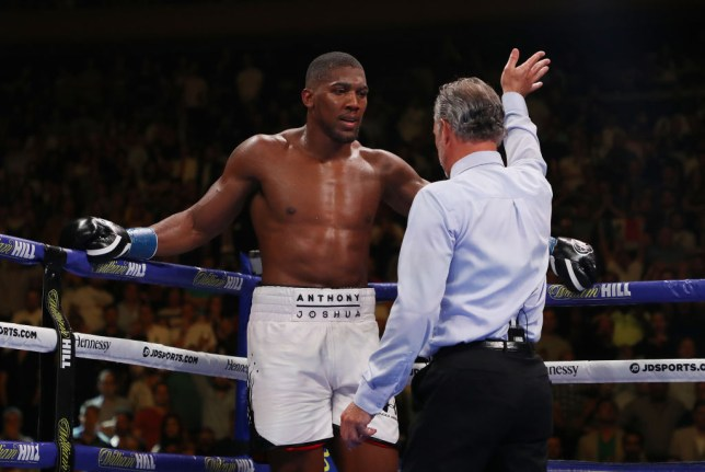 Anthony Joshua plans to seek revenge over Andy Ruiz Jr