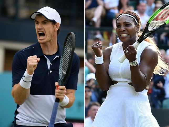 Andy Murray and Serena Williams celebrate winning points