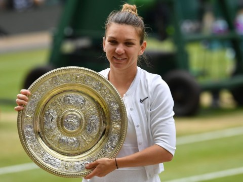 Simona Halep has 'never' played a better match than against Serena Williams