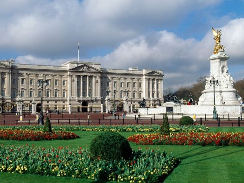 How to get tickets for a Buckingham Palace tour and what are the opening times?