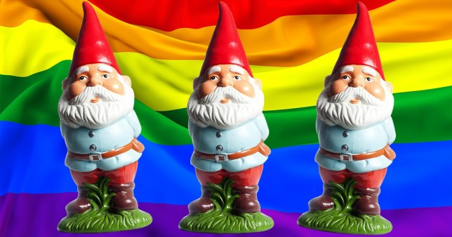 He thought gnomes should not have a sexuality