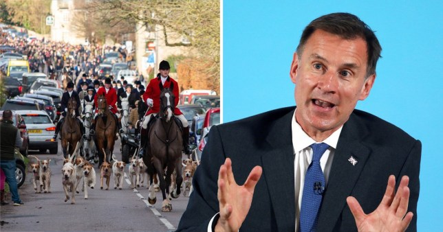 Huntsmen on horses with dogs and Conservative MP Jeremy Hunt