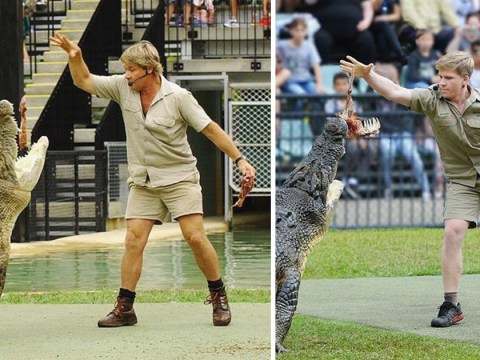 Steve Irwin's son feeds his dad's favourite crocodile 15 years after his dad is pictured doing the same thing