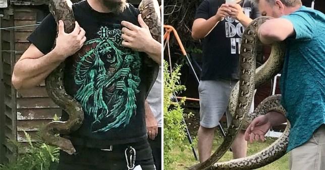 Missing python