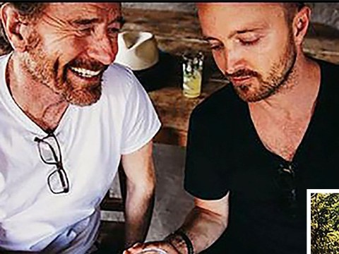 Bryan Cranston and Aaron Paul confirm alcohol collaboration amid Breaking Bad 'teasers'