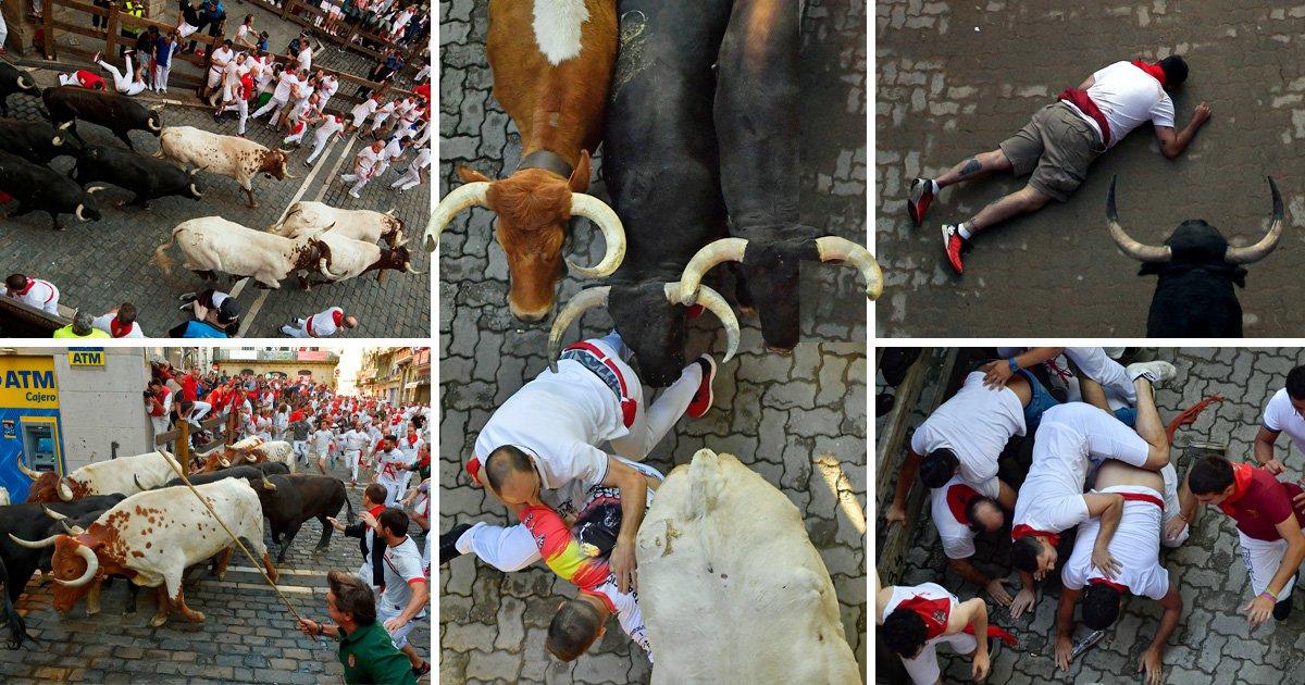Pamplona longhorn curtain trampled