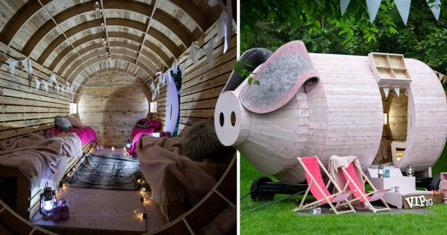 You can sleep inside this giant pig for rent on Airbnb