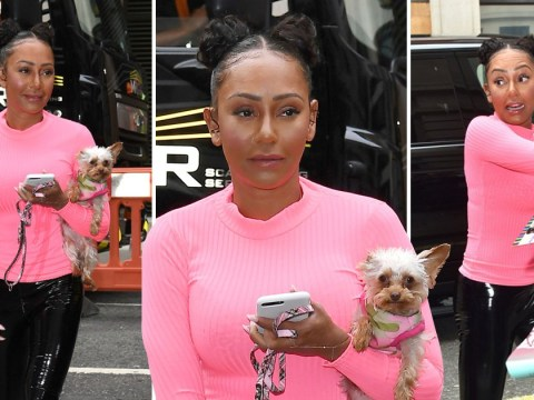 Mel B twins with adorable dog Cookie as she heads to Zoe Ball's radio show