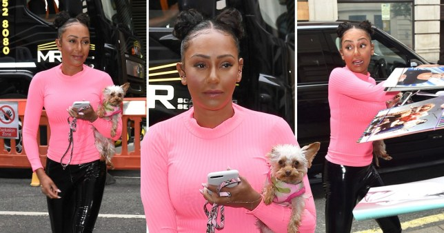 Mel B takes her puppy to see Zoe Ball