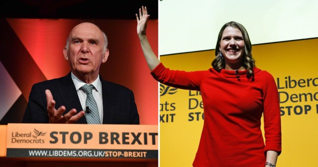 Jo Swinson takes over from Vince Cable