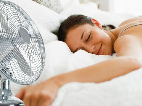 How to prepare your home for the summer heatwave