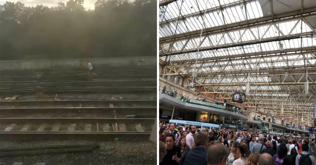 The man was seen running after the dog on the tracks at Waterloo