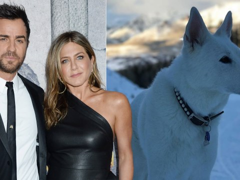 Jennifer Aniston 'reunites with Justin Theroux' at ceremony to mourn death of their dog Dolly