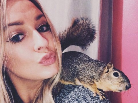 Brain-damaged squirrel inspires woman to open her own animal hospital