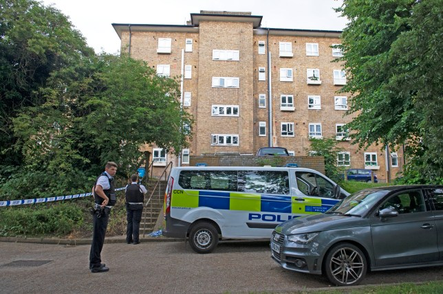 Three arrested after woman found dead in London garage