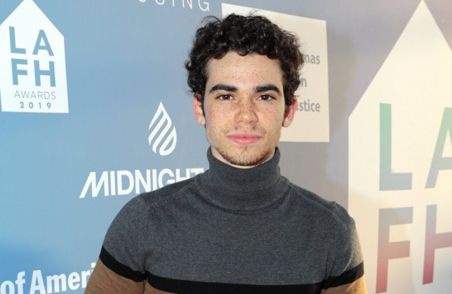 Mandatory Credit: Photo by Eric Charbonneau/REX/Shutterstock (10219076a) Cameron Boyce LAFH Awards 2019, Los Angeles, USA - 25 April 2019