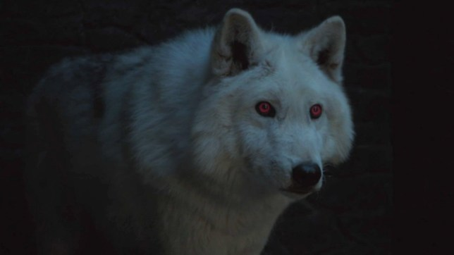 Game of Thrones prequel will feature direwolves