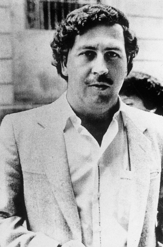 Pablo Escobar's brother wins cyber-squatting turf war without a shot being fired