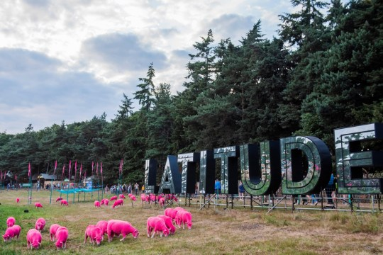 Alamy Live News. W41TPT Henham Park, Suffolk, 18 July 2019. The famous dyed sheep - The 2019 Latitude Festival. Credit: Guy Bell/Alamy Live News This is an Alamy Live News image and may not be part of your current Alamy deal . If you are unsure, please contact our sales team to check.