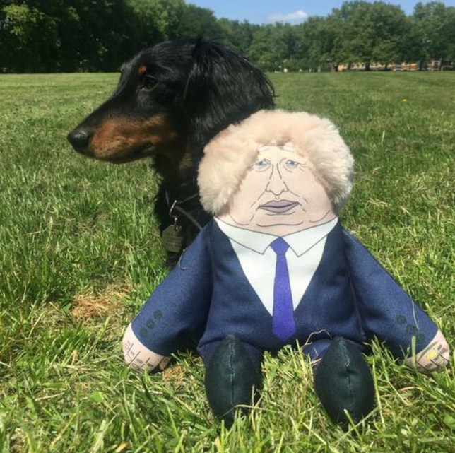 Let your dog express their political frustration with this Boris chew toy