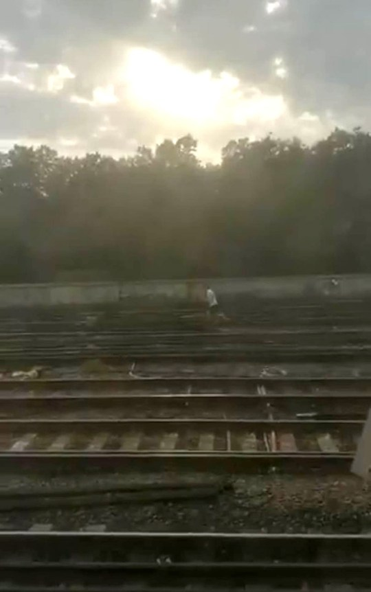 Picture taken with permission from a video posted on twitter by @benburns01 of a man on the railway tracks outside Waterloo station, London, looking for his dog. Train services out of Britain's busiest station were suspended on Wednesday evening after man was seen chasing a dog along electrified tracks. PRESS ASSOCIATION Photo. Issue date: Thursday July 25, 2019. All lines in and out of London Waterloo were blocked at about 7pm due to trespass, South Western Railway said. See PA story RAIL Dog. Photo credit should read: @benburns01/PA WireNOTE TO EDITORS: This handout photo may only be used in for editorial reporting purposes for the contemporaneous illustration of events, things or the people in the image or facts mentioned in the caption. Reuse of the picture may require further permission from the copyright holder.