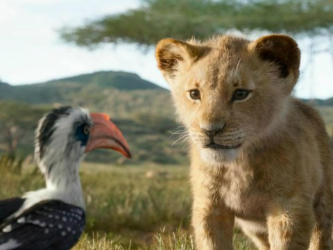 The Lion King remake becomes highest-grossing animated movie ever and our hearts are full