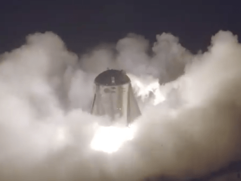 Elon Musk celebrates triumphant test of SpaceX Starhopper Mars rocket prototype
