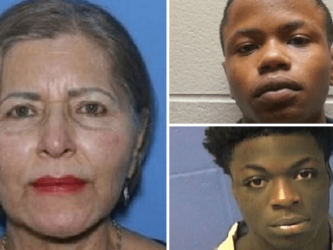 """Boys 'murdered' stranger, 72, 'then left her corpse to be """"obliterated"""" by insects'"""