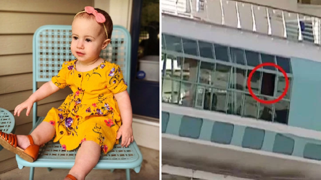 Chloe Wiegand's family hope to fly her home to Indiana on Thursday, four days after she fell to her death from Royal Caribbean's Freedom of the Seas cruise ship