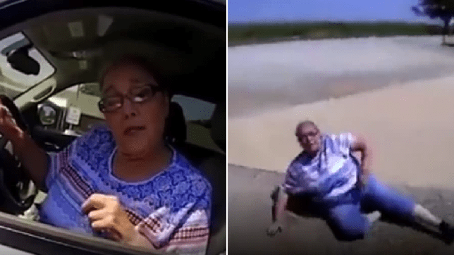 Woman, 65, gets tased after telling cop he's 'full of sh*t