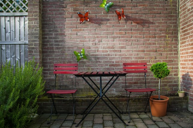 How to turn your tiny paved yard into a beautiful garden