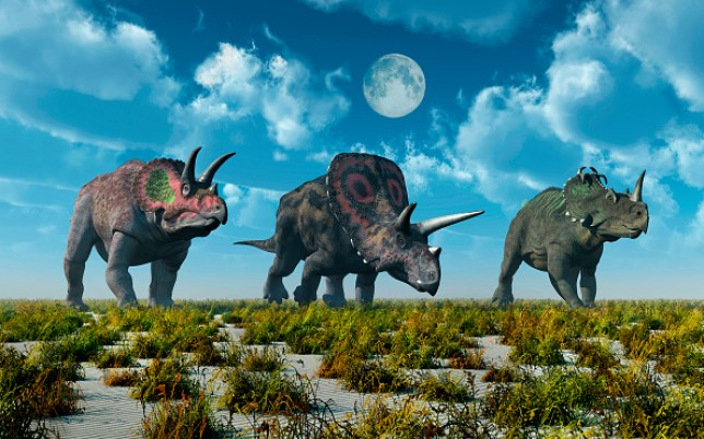 Oxygen in the atmosphere allowed dinosaurs to flourish (Education Images/Universal Images Group via Getty Images)