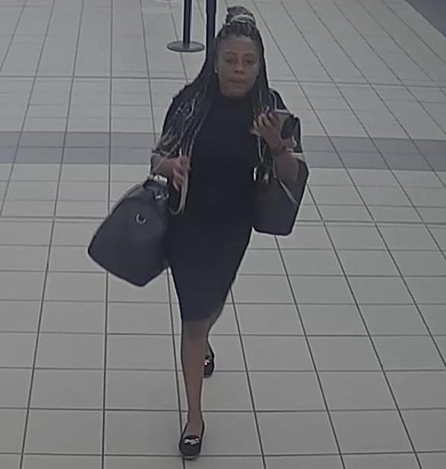 Hunt for female sex attacker who groped girl on a train