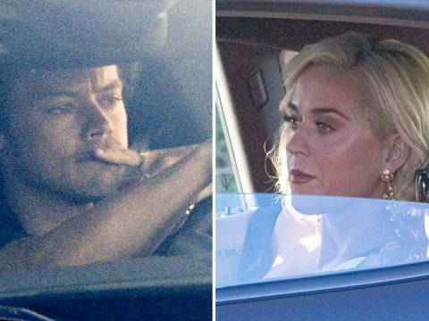 Harry Styles turns Uber driver as he gives Oprah's BFF lift to exclusive Google camp with Katy Perry and Leonardo DiCaprio