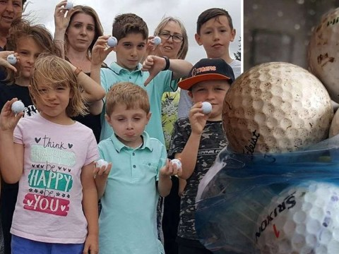 Village residents terrorised by mysterious golf ball attacker