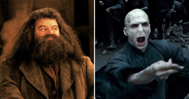 hagrid and voldemorte in harry potter