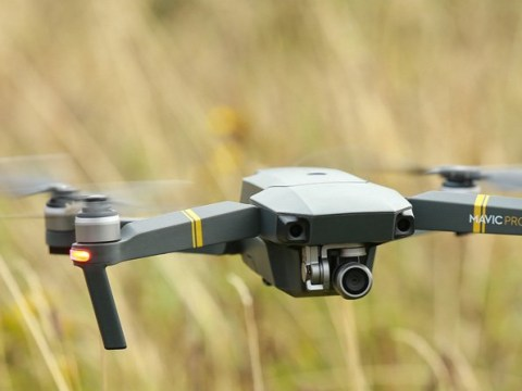 Council could use drones to spy on people moving garden fences