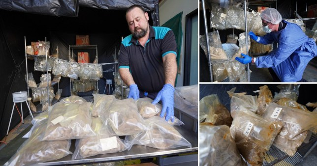 Detectives in Queensland, Australia, said the huge amount of MDMA was one of the region's biggest ever busts (Picture: AFP)