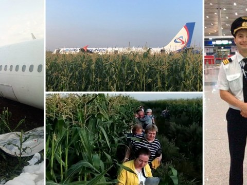 Pilot makes emergency landing in field after birds knocked out both engines