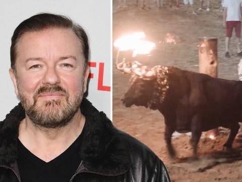 Ricky Gervais calls bullfight fans 'evil c***s' over horrifying video of bull set on fire and tortured