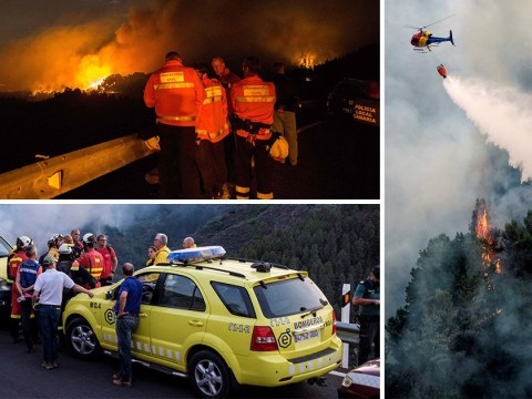 Wildfire sweeps Gran Canaria forcing 4,000 people to evacuate